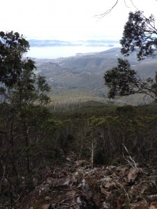 The 170m travel path taken by the boulder, over 40+0 talus slopes and through 250 sub-alpine eucalypt forest slopes.